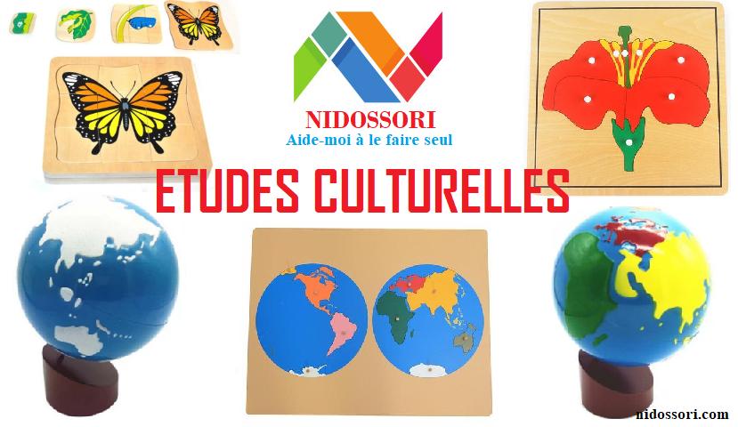 Etudes culturelles Montessori