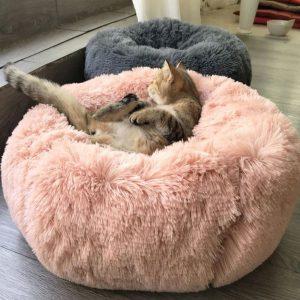Lit Confortable pour Chien/Chat